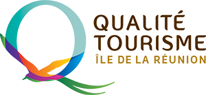 Logo QTIR