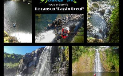 Etat des Canyons à La Réunion