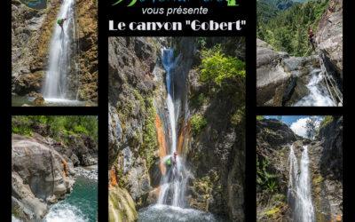 Canyon Gobert